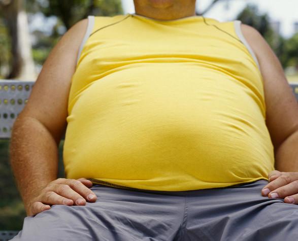 tips bakar lemak perut
