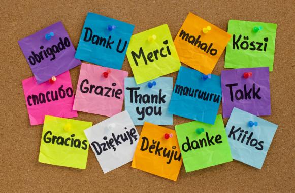 Grazie di Tutto