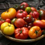 8 Khasiat dan kelebihan makan Tomato.