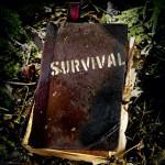 2015 – Tahun Survival.