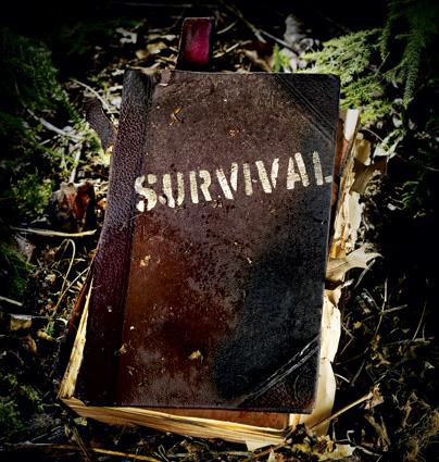 survival blog 2015